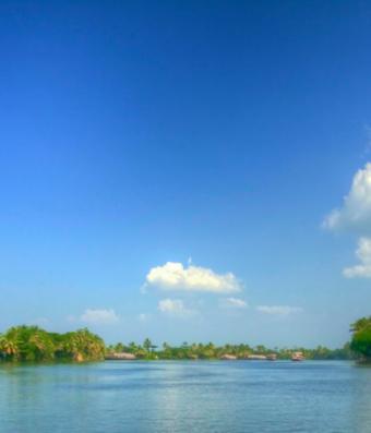 Voyage épicé du Kerala au Tamil Nadu